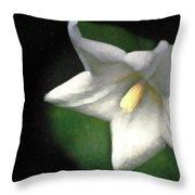 White Balloon Flower-faux Painting Throw Pillow