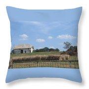 White Barn Throw Pillow
