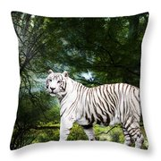 White Bengal Throw Pillow