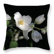 White Blossoms Throw Pillow
