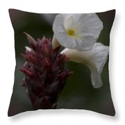 White Bromeliad Flowers Throw Pillow