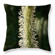 White Canadian Burnet Throw Pillow