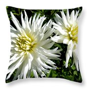 White Dahlias In Autumn  Throw Pillow