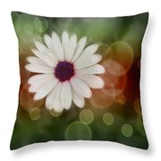White Daisy In A Sunset Throw Pillow