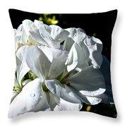 White Dew Throw Pillow