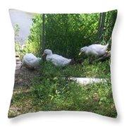White Ducks On A Ramp Throw Pillow