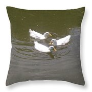 White Ducks Swimming Throw Pillow