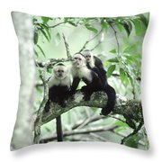 White-faced Capuchins Throw Pillow