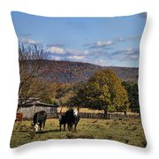 White Faced Cattle In Autumn Throw Pillow