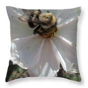 White Flower And Bee Throw Pillow