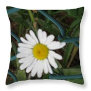 White Flower On The Fence Throw Pillow