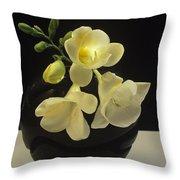 White Freesias In Black Vase Throw Pillow
