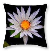White Frost Flower Throw Pillow