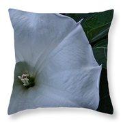 White Glory Throw Pillow