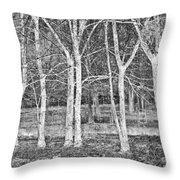 White Grove Throw Pillow