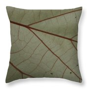 White Hau Leaf With Red Veins Throw Pillow