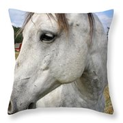 White Horse Closeup Throw Pillow