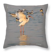 White Ibis With Wings Raised Throw Pillow
