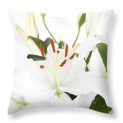 White Lilies And Background Throw Pillow