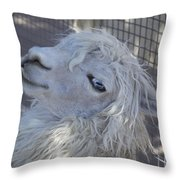 White Llama Throw Pillow