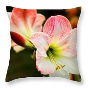 White N Pink Throw Pillow