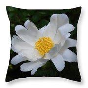 White Peony Flowers Series 4 Throw Pillow