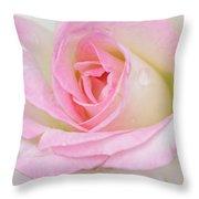 White-pink Rose Throw Pillow