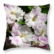White Pink Ruffled Violet Throw Pillow