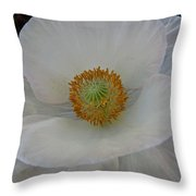 White Poppy Two Throw Pillow