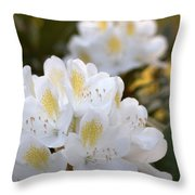 White Rhododendron Bloom Throw Pillow