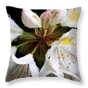 White Rhododendron Blooms  Throw Pillow