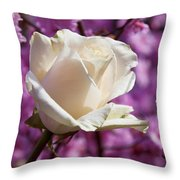 White Rose And Plum Blossoms Throw Pillow