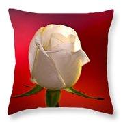 White Rose Red And Black Bg Throw Pillow