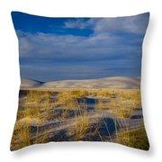 White Sands Golden Grass Throw Pillow