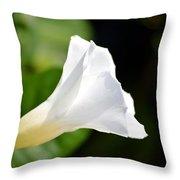 White Shadows Throw Pillow