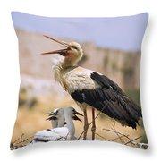 White Stork Ciconia Ciconia, Turkey Throw Pillow by Carson Ganci