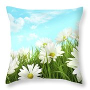 White Summer Daisies In Tall Grass Throw Pillow