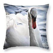 White Swan Throw Pillow by Elena Elisseeva