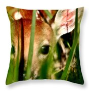 White Tailed Deer Fawn Hiding In Grass Throw Pillow