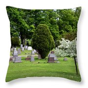 White Tree In Cemetery Throw Pillow