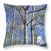 White Trees Against A Blue Sky Throw Pillow
