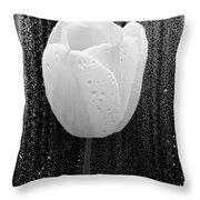 White Tulip On Black Throw Pillow