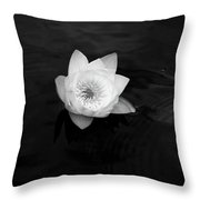 White Water-lily 3 Throw Pillow