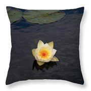White Water-lily Throw Pillow