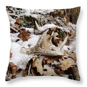 Whitetail Deer Antler  - Half Of 10 Throw Pillow