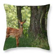 Whitetail Deer Fawn Throw Pillow