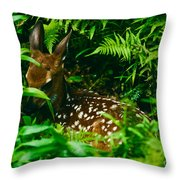 Whitetail Fawn And Ferns Throw Pillow