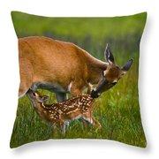 Whitetail Fawn Nursing Throw Pillow