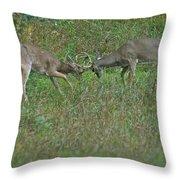 Whitetail Fighting_9668 Throw Pillow