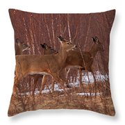 Whitetails On The Move Throw Pillow